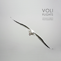 VOLI-FLIGHTS